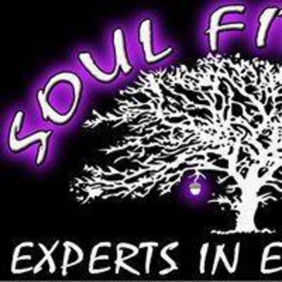 SOUL Fitness  logo