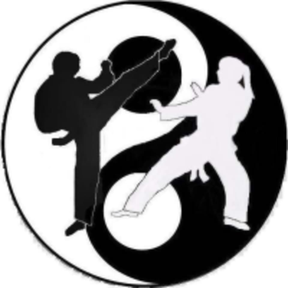 Palmer Fitness logo