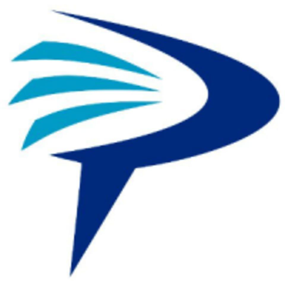 Empowering Punch logo