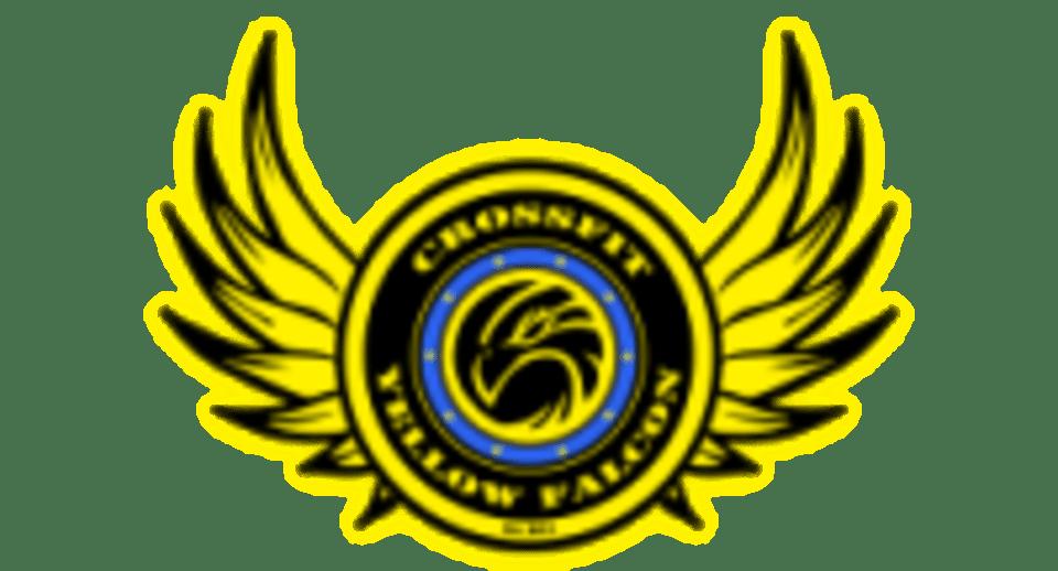 Crossfit Yellow Falcon logo