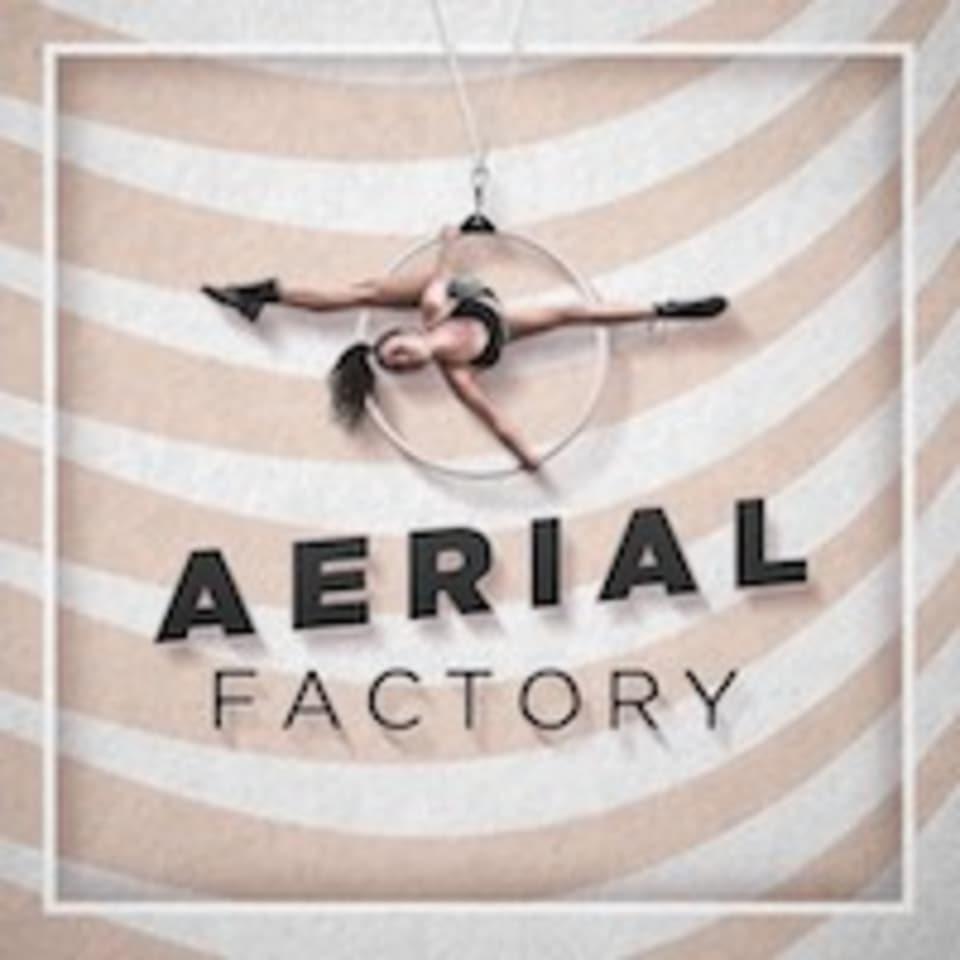 Aerial Factory logo