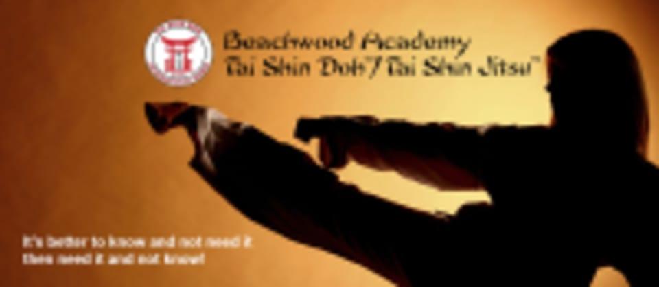Beachwood Tai Shin Doh Academy logo