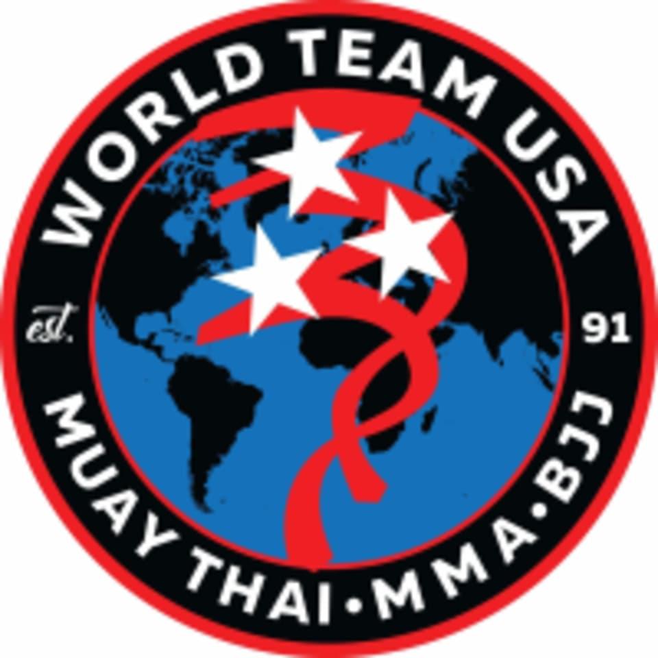 World Team USA logo