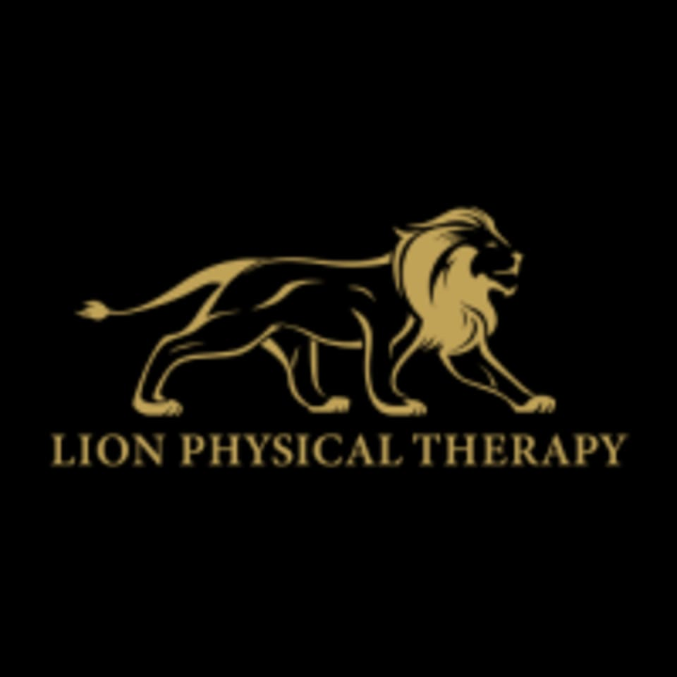 Lion Physical Therapy logo