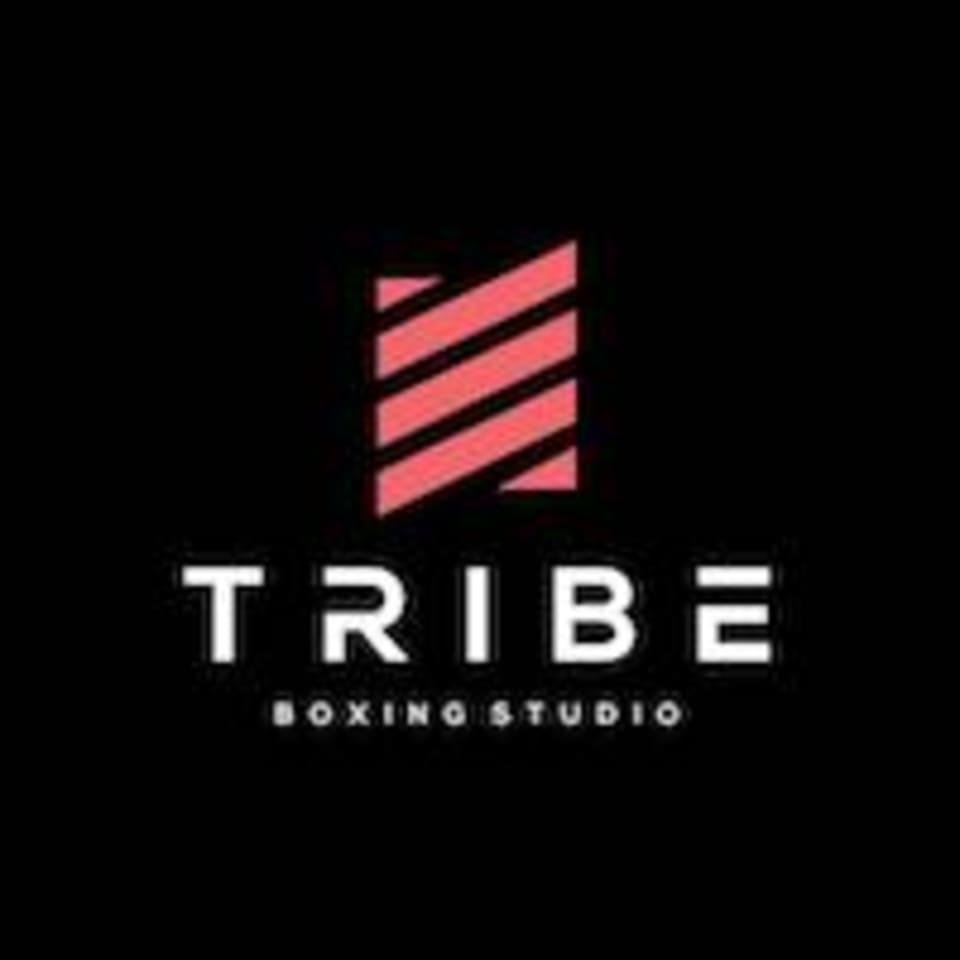 TRIBE Boxing Studio logo