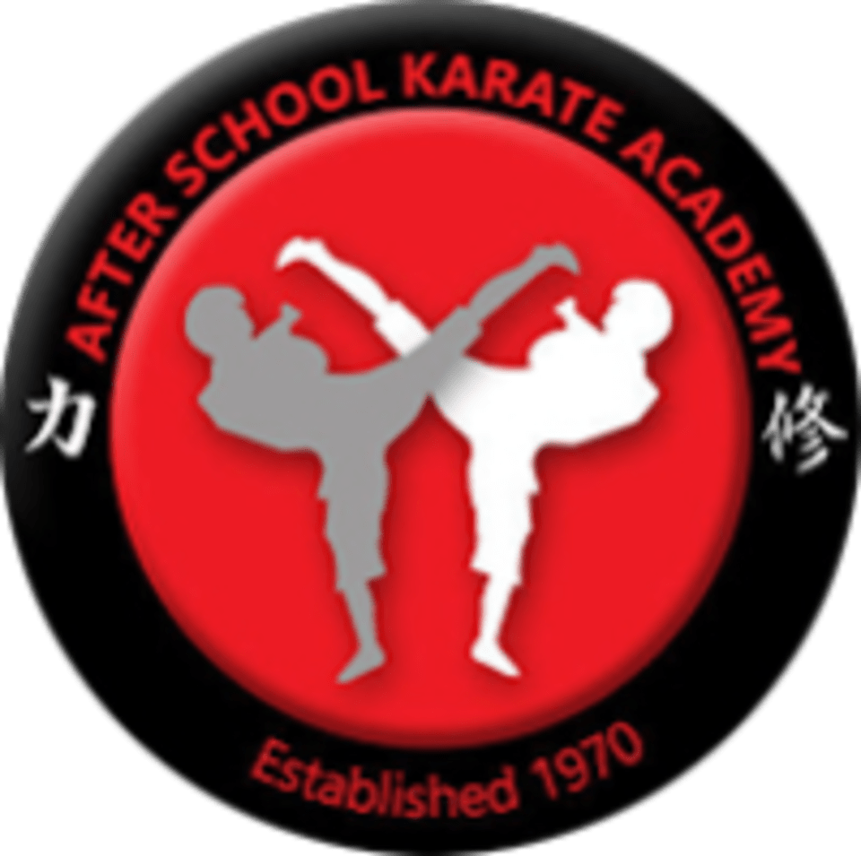 After School Karate Academy And Summer Camp logo