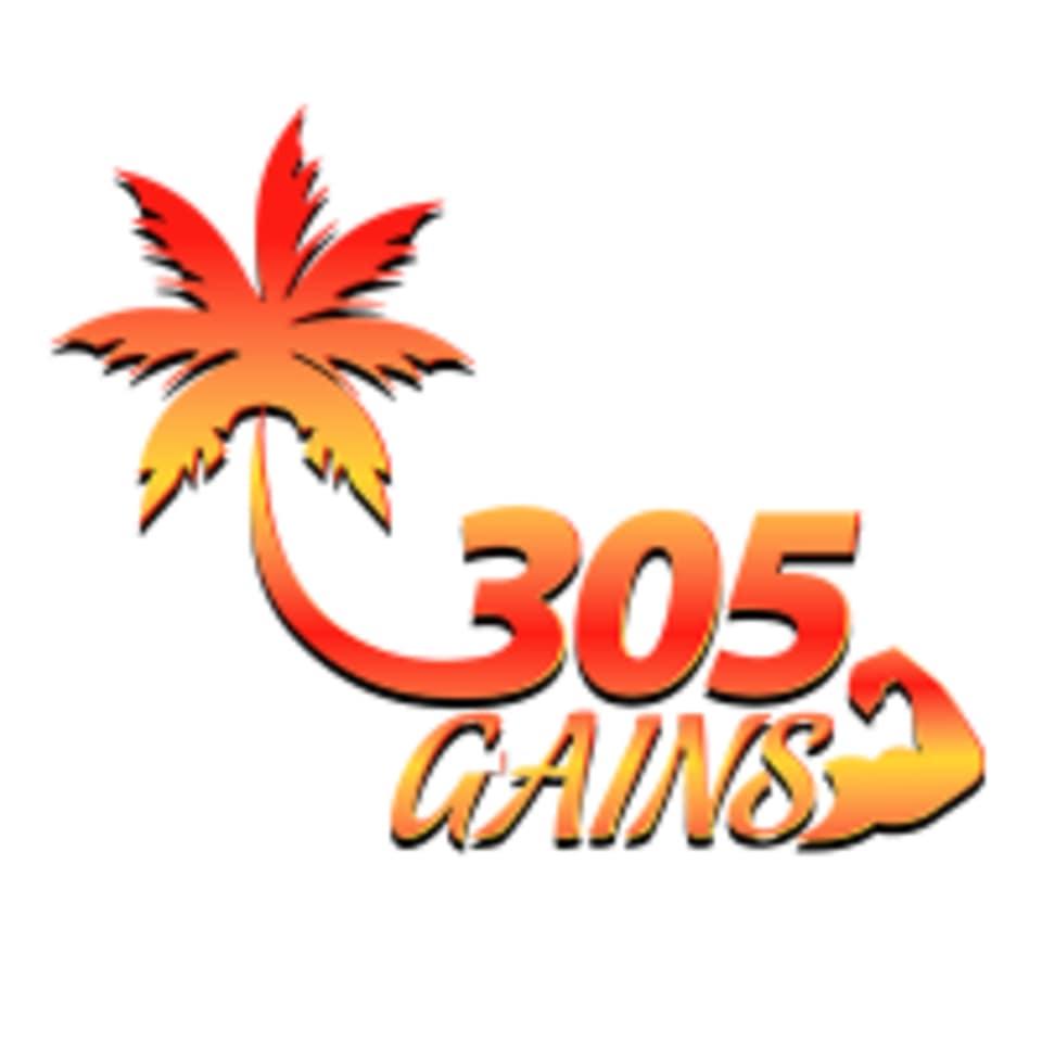 305 GAINS logo