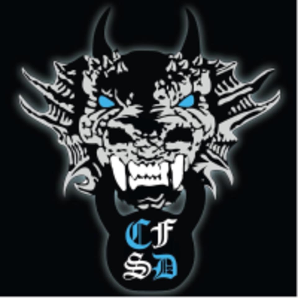 CrossFit Silver Dragon logo
