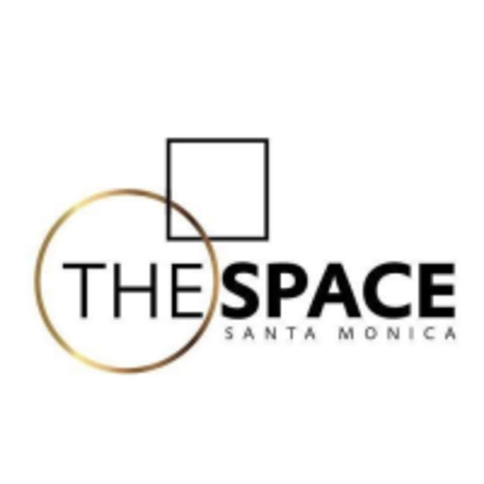 The Space SaMo logo