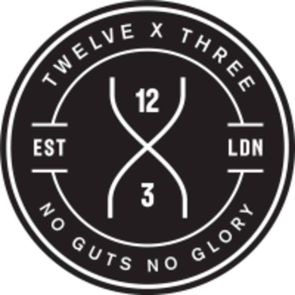 12x3 logo