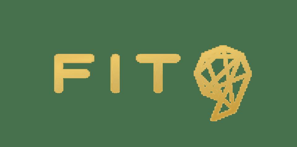 Fit9 logo