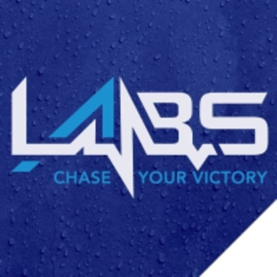 The Labs logo