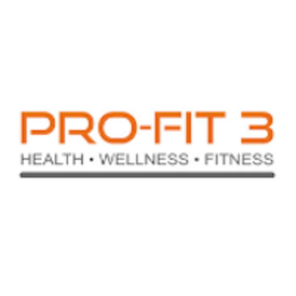 PRO-FIT 3 logo