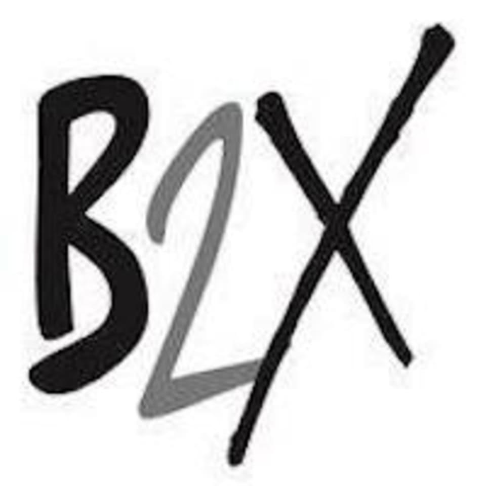 B2XPRESS logo