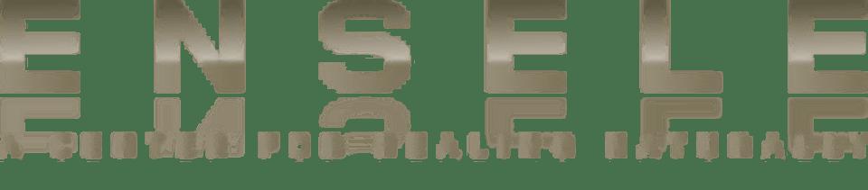 ENSELE  logo