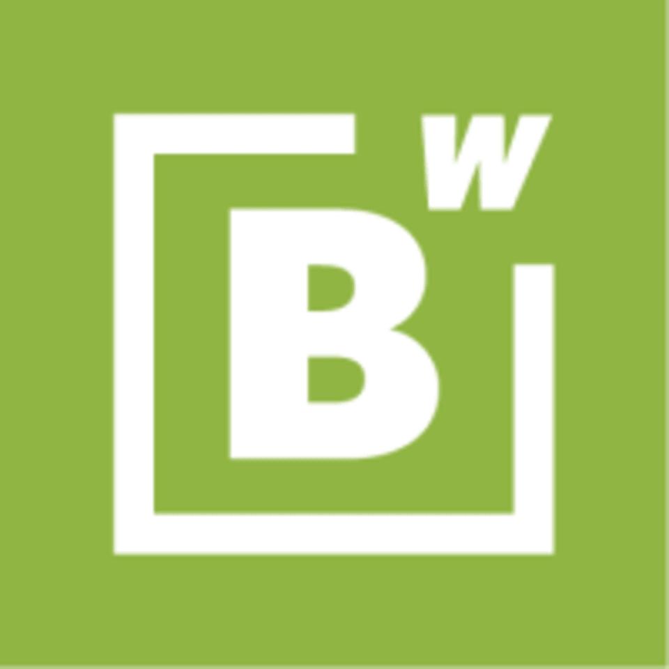 BodyWise Fitness logo
