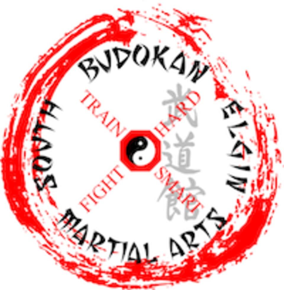 South Elgin Budokan Martial Arts logo