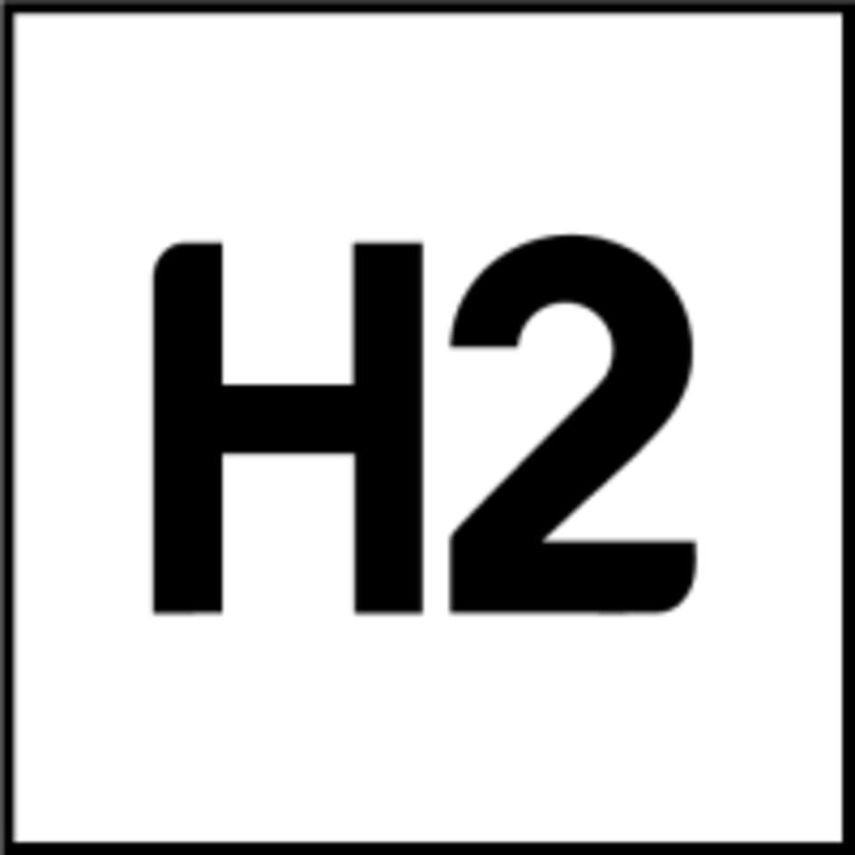 H2 Clubs logo