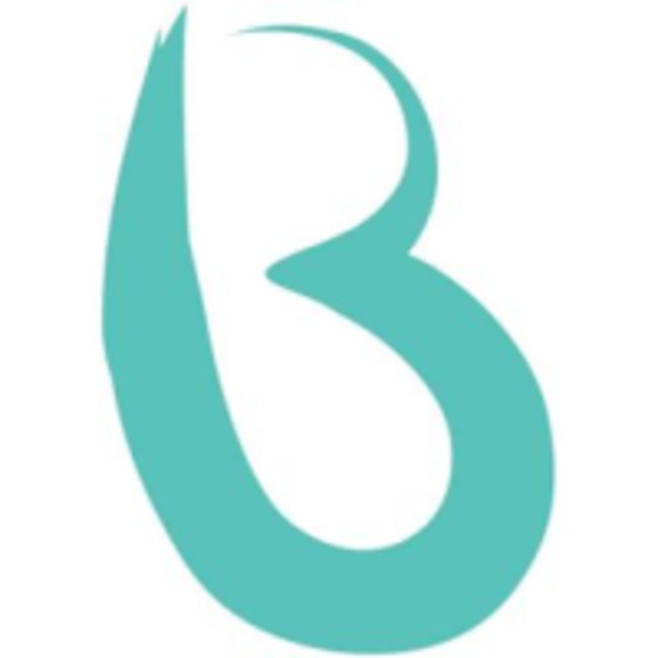 Barre Fitness South Surrey logo