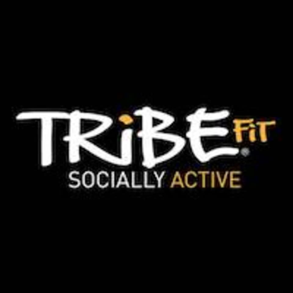 TribeFit logo