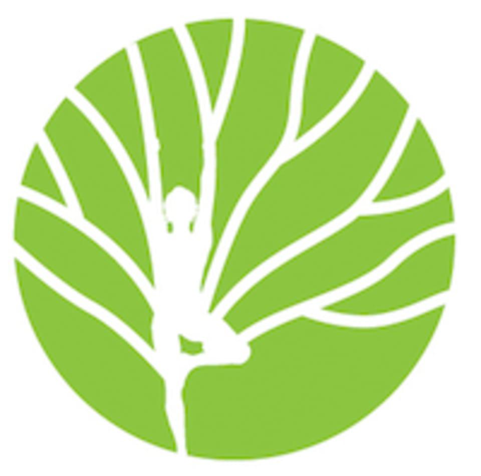 BodyTree logo