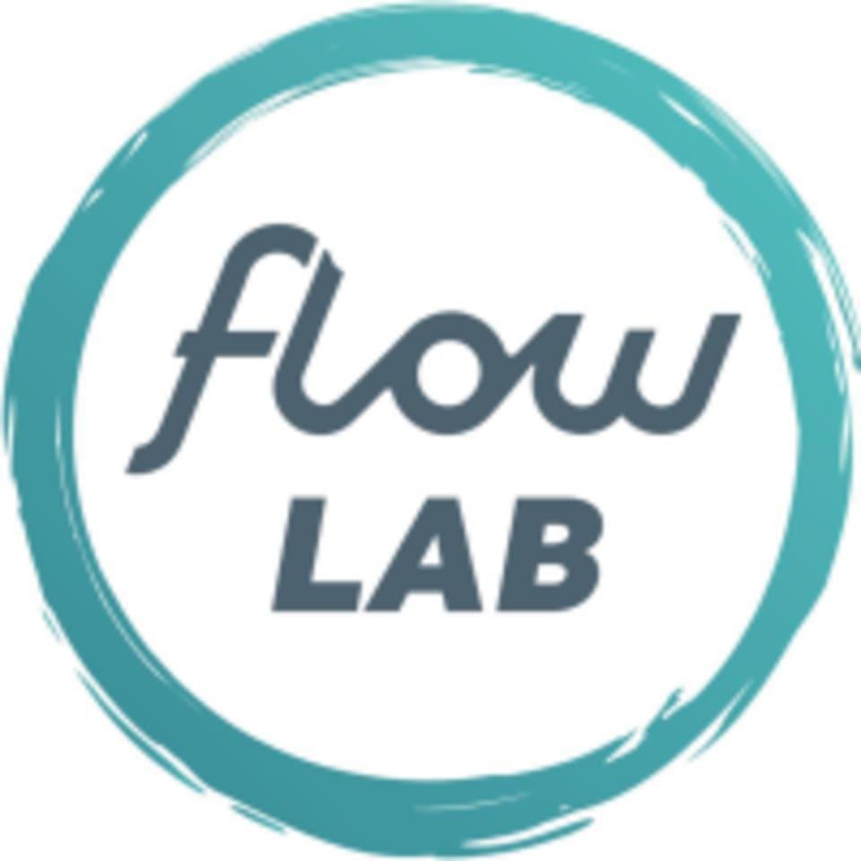 Flow Lab logo