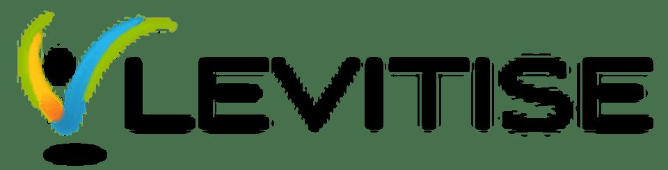 Levitise logo