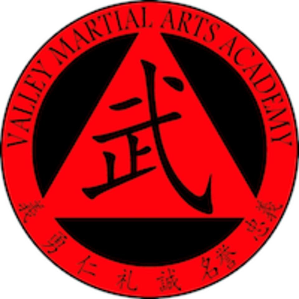 Valley Martial Arts Academy logo