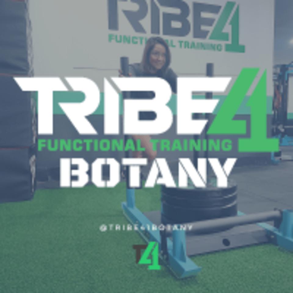 Tribe41 Functional Training Botany logo