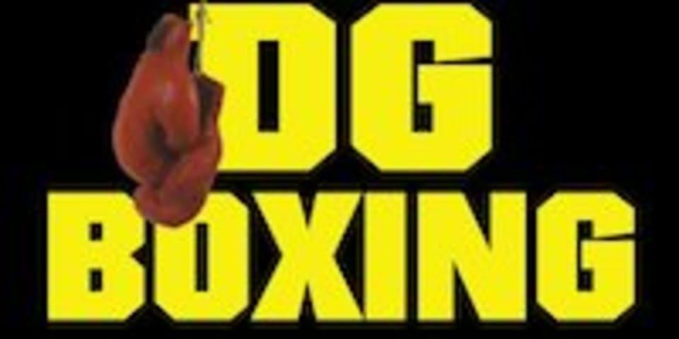 DG Boxing  logo