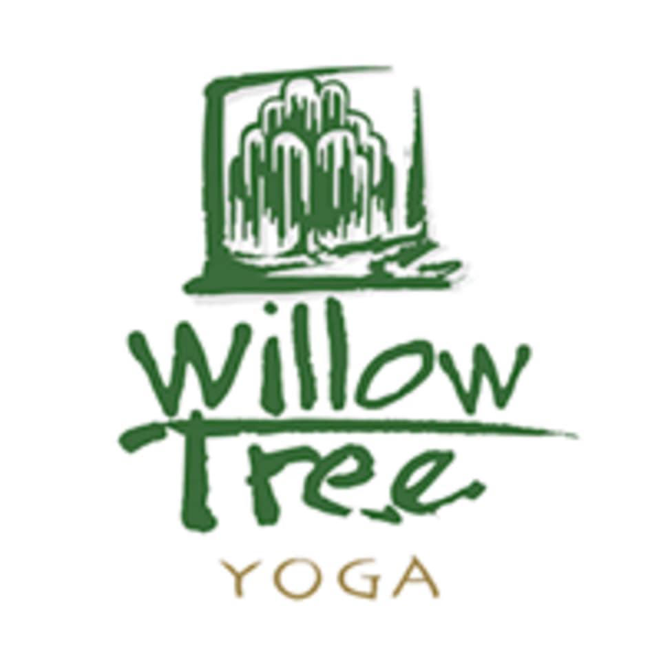 Willow Tree Yoga logo