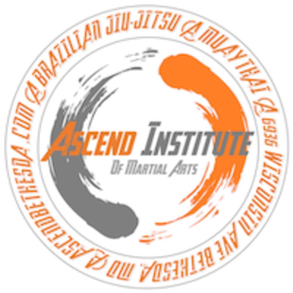Ascend Institute of Martial Arts logo