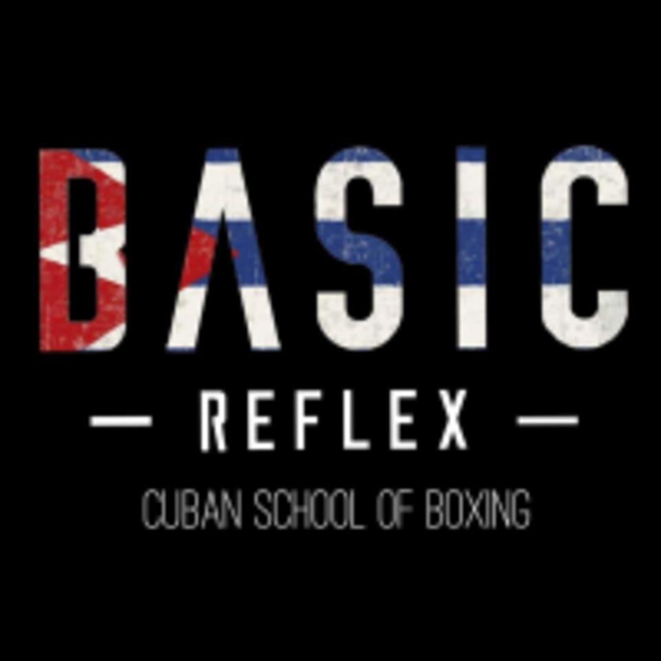 Basic Reflex logo