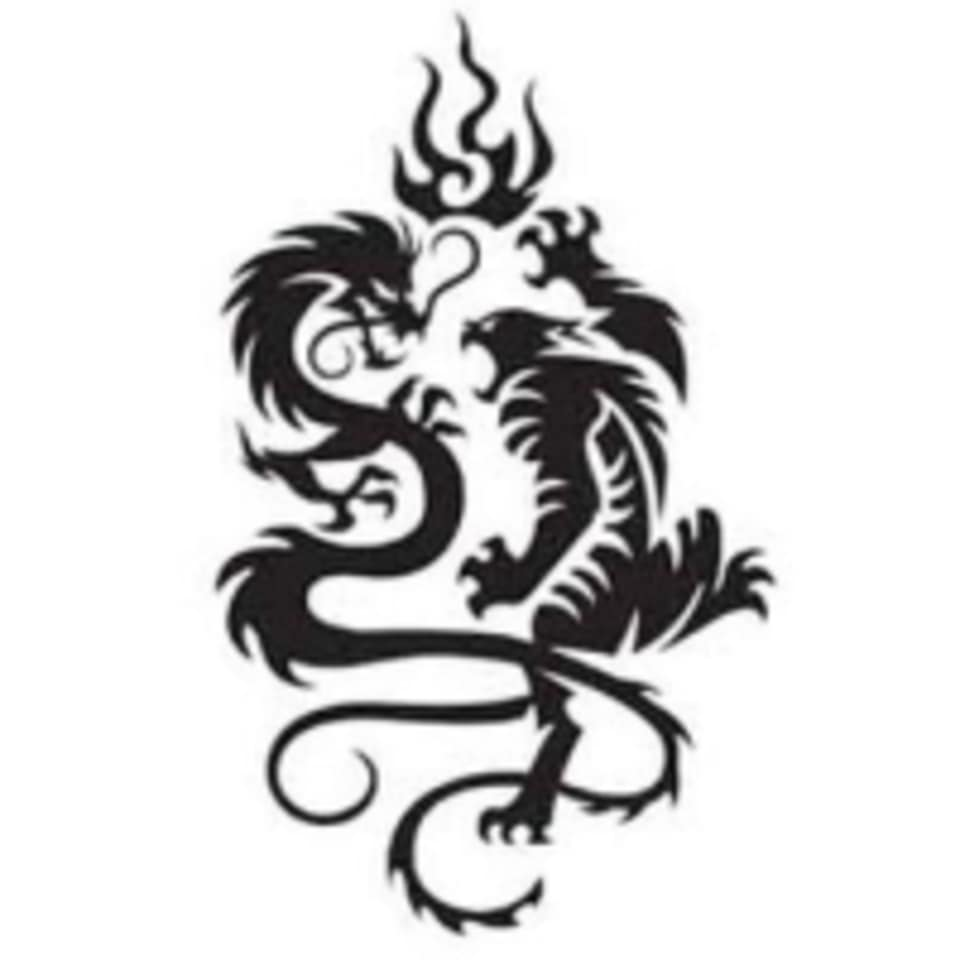 Boca Raton Karate & Kickboxing Academy logo