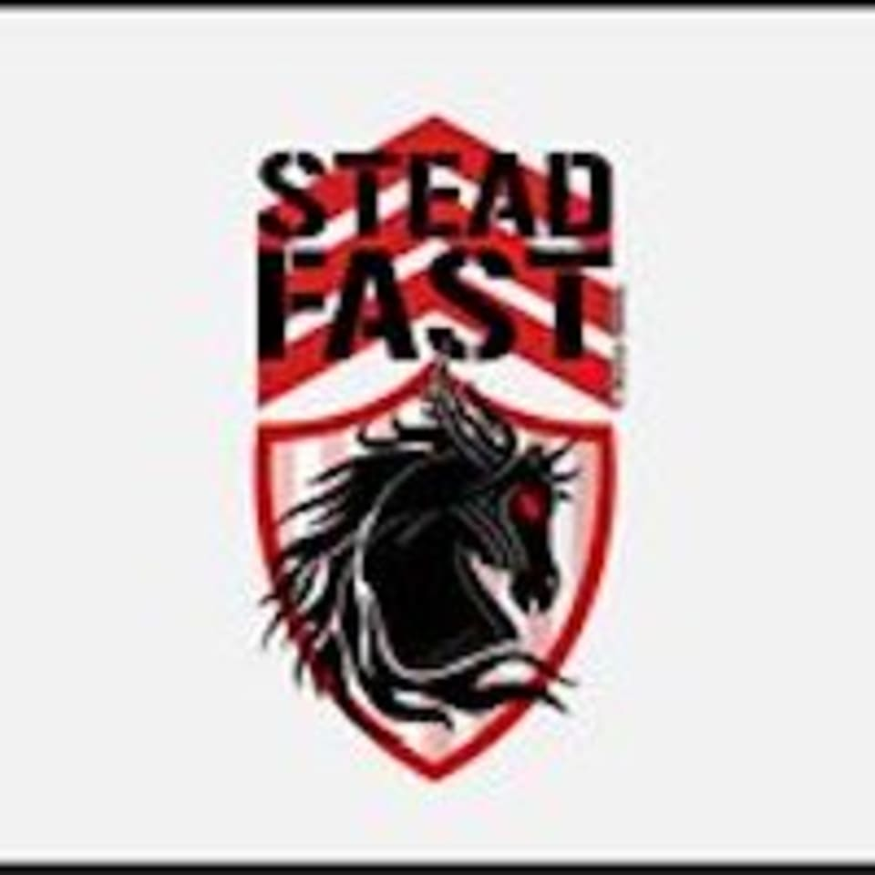 Steadfast Training Systems logo