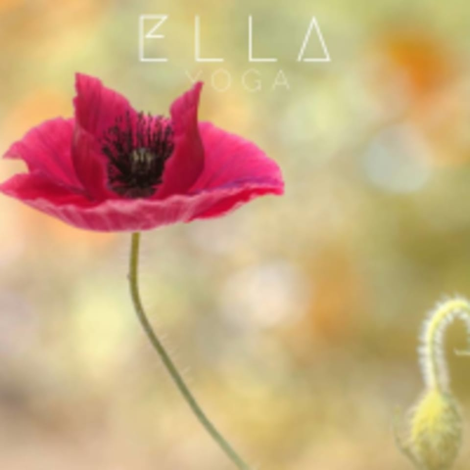 Ella Yoga Hollywood logo