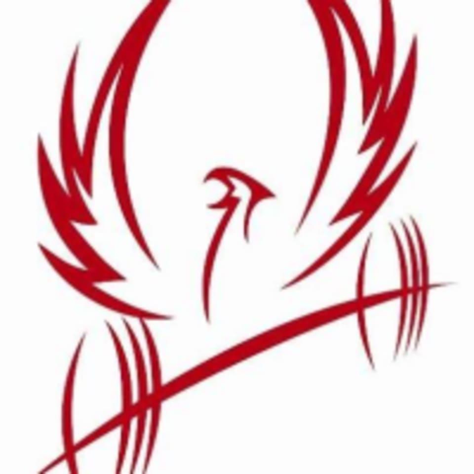 Phoenix Fitness at Blue Hill logo