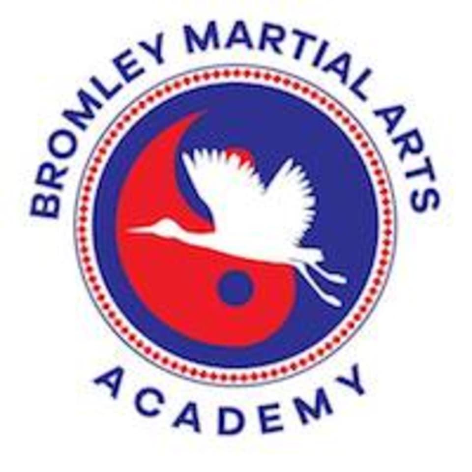 Bromley Martial Arts Academy  logo
