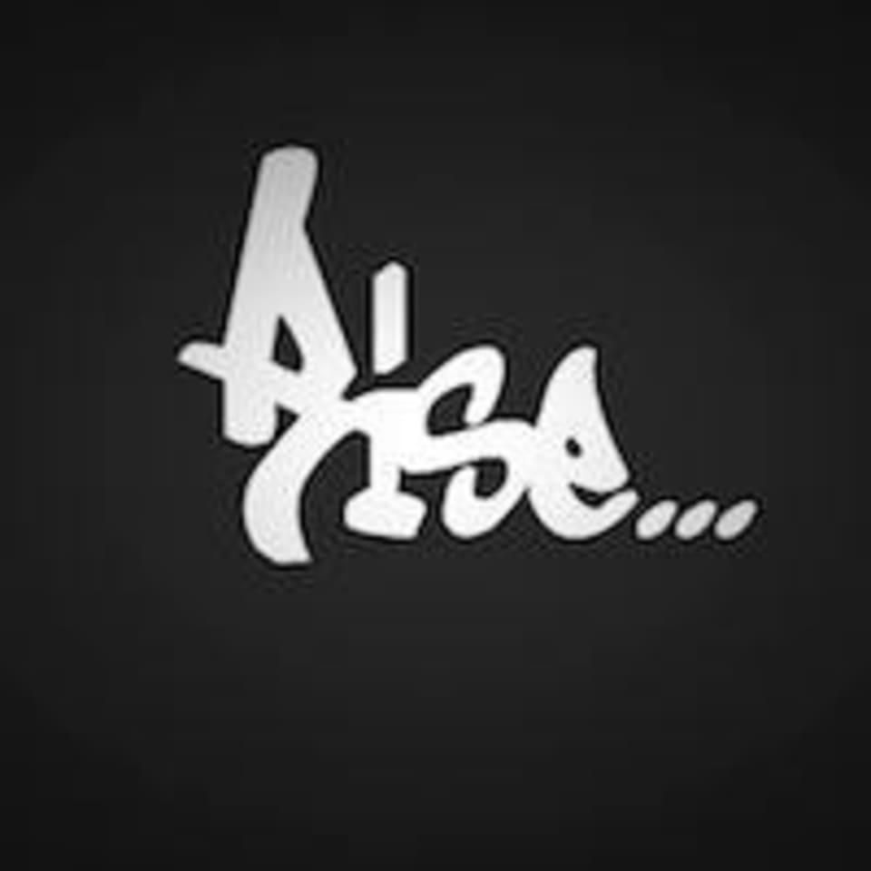 Rise Muay Thai & MMA logo