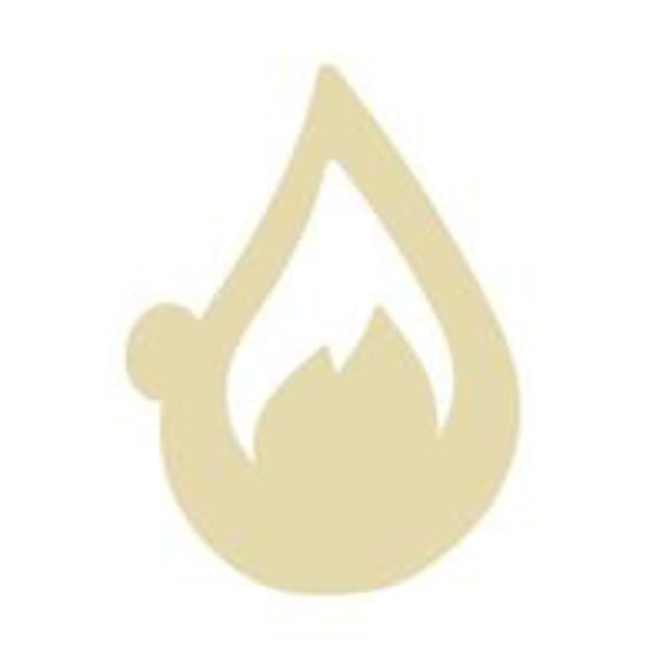 Philly Hot Asana logo