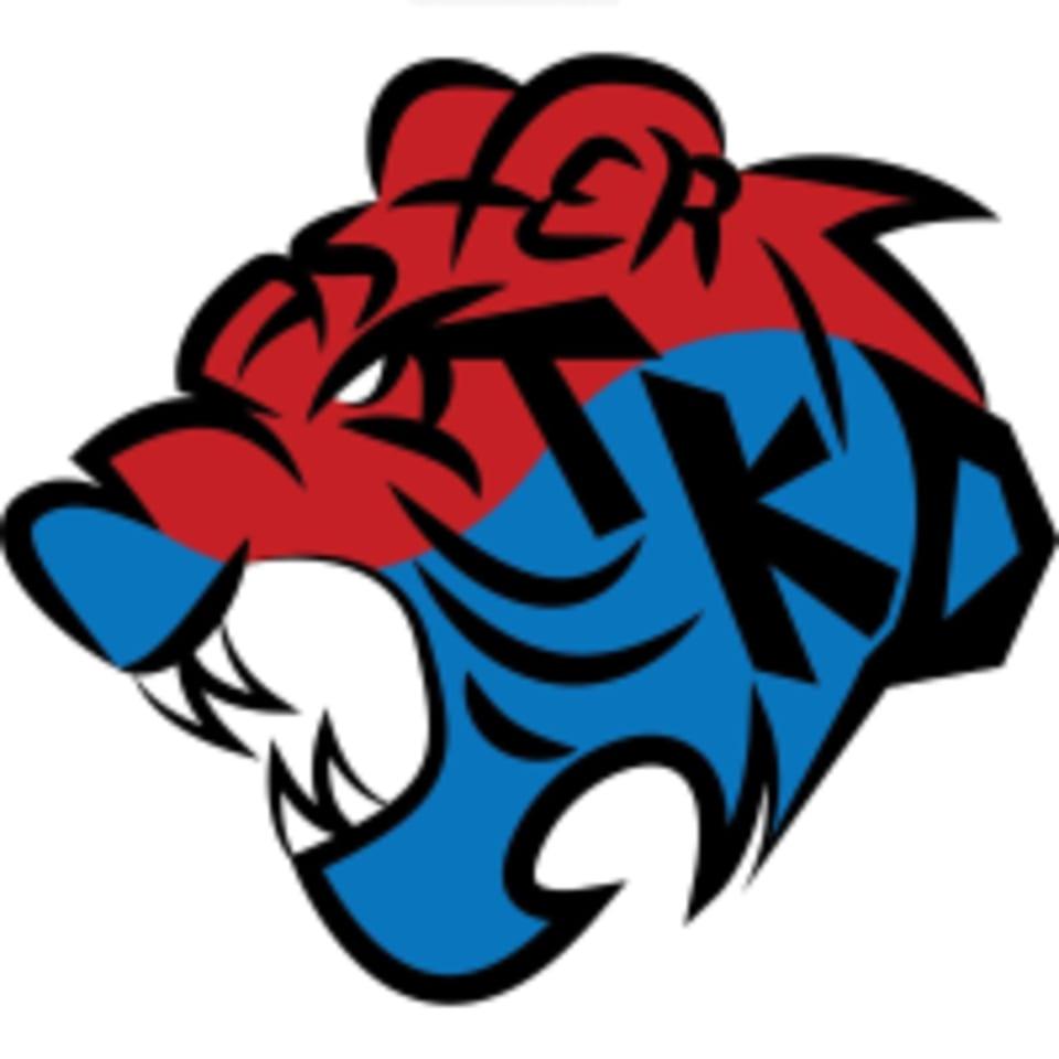 Master Taekwondo logo