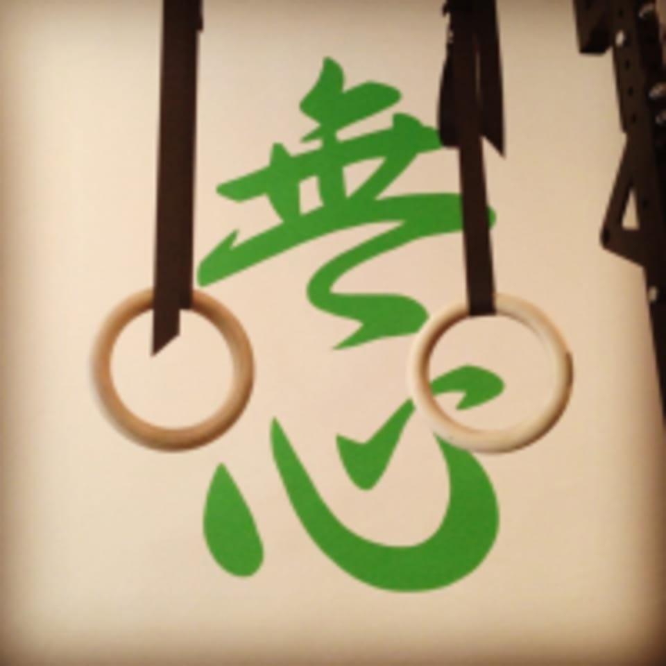 Mushin Mixed Martial Arts logo