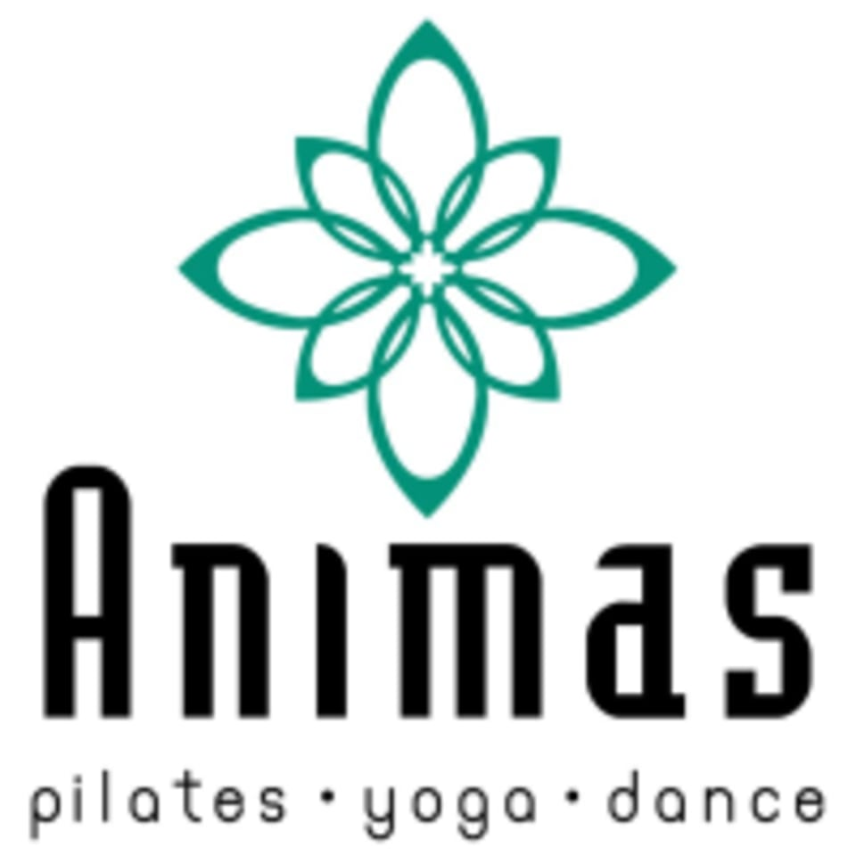 Animas Pilates Yoga Dance logo