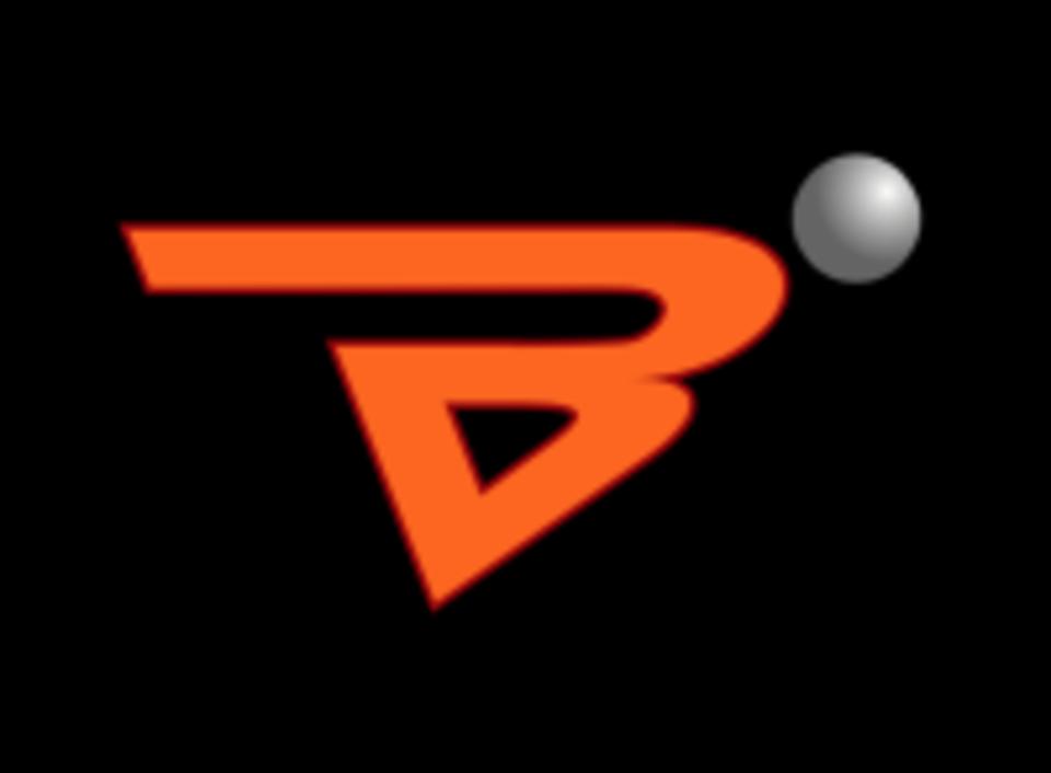 B-Fit Biscayne logo