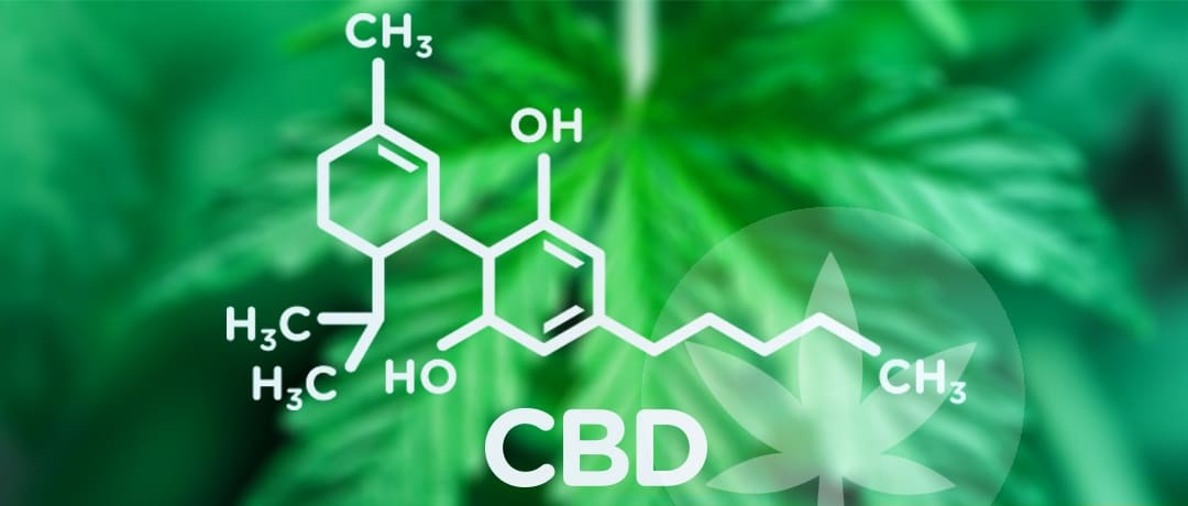 CBD and Chemotherapy