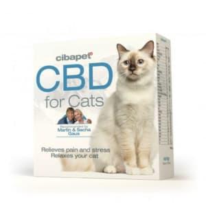 cbd pastilles cats