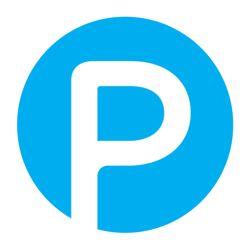 Pundit logo