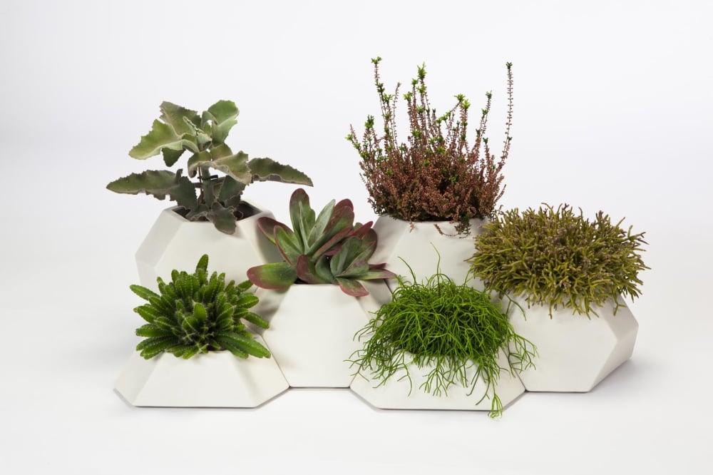 Ma-Ce-Ta planters by Pott - Design by Miguel Angél Garcia Belmonte