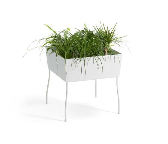 Green Pedestals by OFFECCT by OFFECCT
