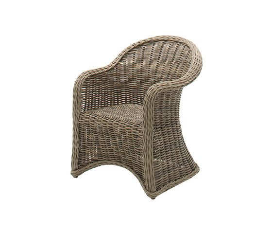 https://res.cloudinary.com/clippings/image/upload/t_big/dpr_auto,f_auto,w_auto/v1/product_bases/havana-large-dining-chair-with-arms-by-gloster-furniture-gloster-furniture-povl-eskildsen-clippings-7136582.jpg